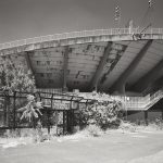 The Flaminio Stadium By Pier Luigi And Antonio Nervi